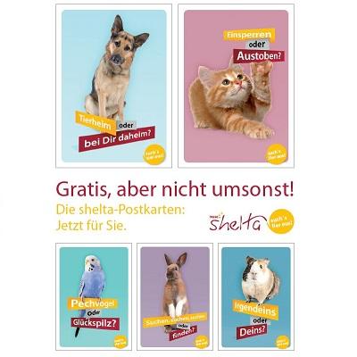 Postkarten von Tassos´s Shelta komplett kostenlos