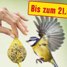 Wildvogelfutter Aktion bei Fressnapf + 10% Neukundenrabatt