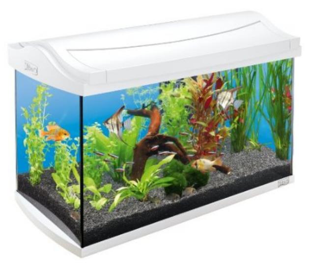 Tetra  AquaArt Aquarium-Komplett-Set 60l für 89,99€