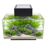 Fluval Edge I Aquarium, schwarz für 89,99€ - Cyber Monday Deals Week