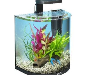 *TOP* Tetra AquaArt Explorer Line Krebs Aquarium Komplett-Set 30L ab ~61,46€