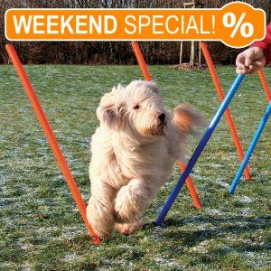 *WEEKEND SPECIAL* Trixie Agility Parcours Slalom-Stangen Set für 29,90€
