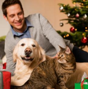 Weihnachts-Gutschein - 10% Rabatt auf alles