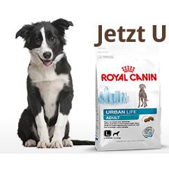 Jede Menge Aktionen bei Zooroyal: z.B. Snacks und Bonus-Aktionen + 10€ Gutschein (MBW 50€)