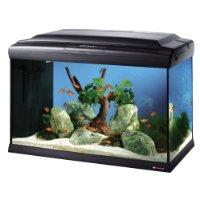 Ferplast Cayman 60 Profi-Aquarium für nur ~72€ (Vergleich: ~205€)