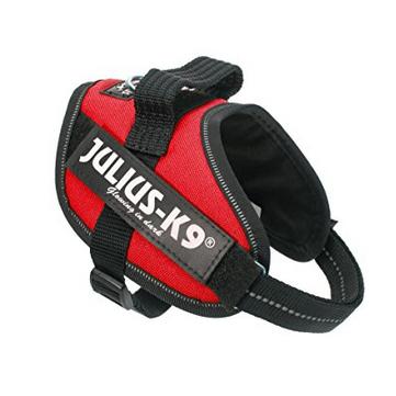 Julius-K9 Powergeschirr, Größe: Mini-Mini, Rot für 14,99€