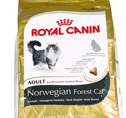 Royal Canin Katzenfutter Norwegische Waldkatze 10 kg für ~26€