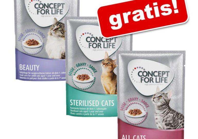 3 x 85 g Concept for Life Mixpaket Katzenfutter + weitere Gratisartikel bei zooplus
