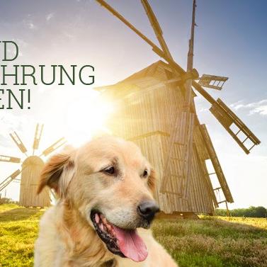 Futtermuehle: 15% Rabatt auf Happy Dog Africa