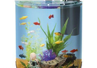 Amazon: Artikel für's Aquarium bis zu 42% reduziert! - z.B. Tetra AquaArt Komplett-Set für 81,75€